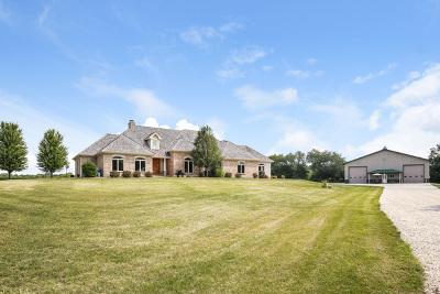 Elgin Single Family Home For Sale: 9n470 Tamara Drive
