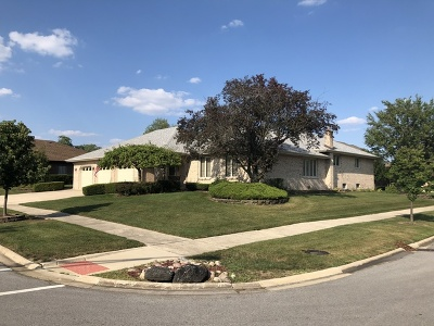 Orland Park Single Family Home For Sale: 13531 Pawnee Road