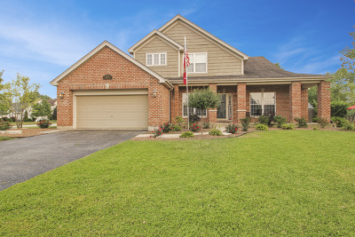 Plainfield Single Family Home For Sale: 23721 West Orchard Lane