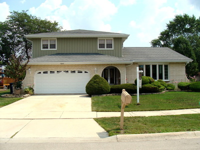 Orland Park Single Family Home For Sale: 14043 Catherine Drive