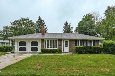 Schaumburg Single Family Home For Sale: 411 West Weathersfield Way