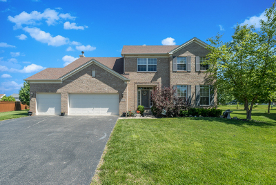 Minooka, Channahon Single Family Home For Sale: 25140 South Stoney Brook Court