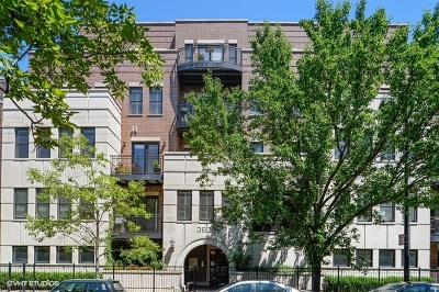Condo/Townhouse New: 3823 North Ashland Avenue #401