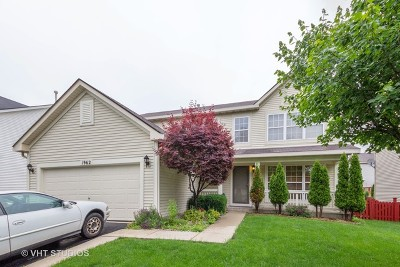 Romeoville Single Family Home For Sale: 1962 Whitmore Drive