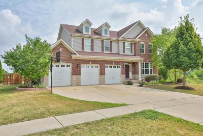 Shorewood Single Family Home For Sale: 620 Herath Lane