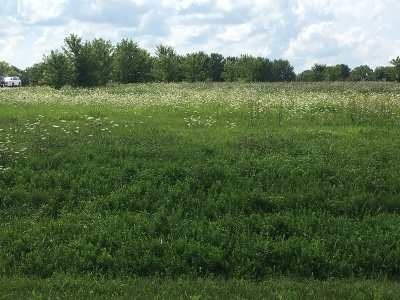 Elburn Residential Lots & Land For Sale: Lot 12 Blackberry Crossing Circle