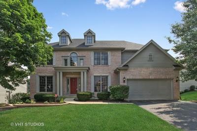 Naperville IL Single Family Home New: $575,000