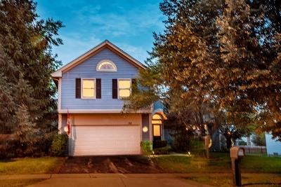 Vernon Hills IL Single Family Home New: $329,000