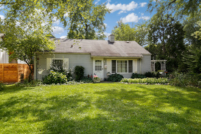 Hinsdale Single Family Home For Sale: 634 West Hinsdale Avenue