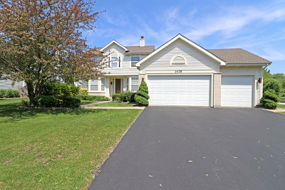 Buffalo Grove Single Family Home For Sale: 2470 Chambourd Drive