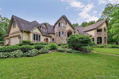 Kane County Single Family Home For Sale: 3n743 High Point Lane