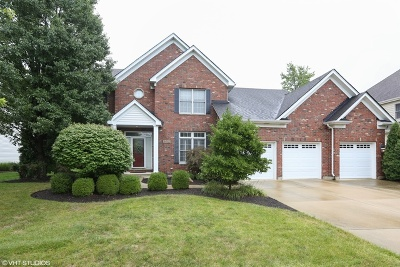 Naperville Single Family Home For Sale: 3432 Redwing Drive