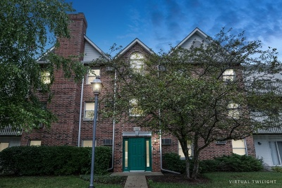 Lake In The Hills Condo/Townhouse For Sale: 1332 Cunat Court #2C