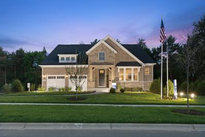 Wheaton Single Family Home For Sale: 175 Loretto Court
