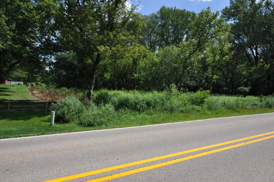 Gilberts Residential Lots & Land For Sale: Lot 11 Powers Road