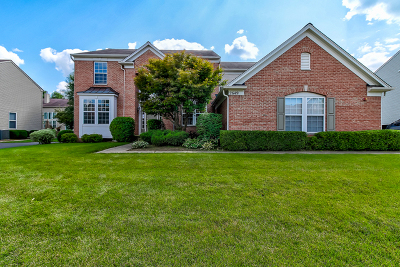 West Dundee Single Family Home For Sale: 2649 Carrington Drive