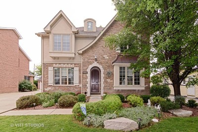 Arlington Heights Single Family Home For Sale: 709 South McKinley Avenue