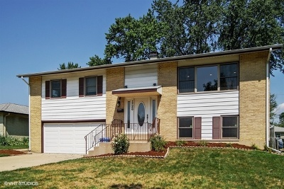Mount Prospect Single Family Home For Sale: 1726 West Pheasant Trail
