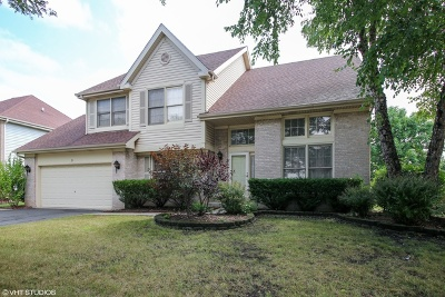 Schaumburg Single Family Home For Sale: 21 Nicolette Avenue