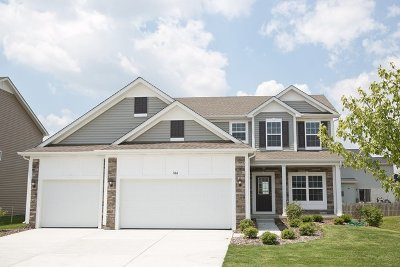 Romeoville Single Family Home Contingent: 566 South Stone Brook Drive