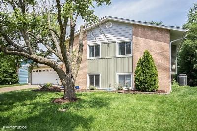 Woodridge Single Family Home For Sale: 2532 Jackson Drive