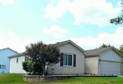 Romeoville Single Family Home For Sale: 630 Wild Indigo Avenue
