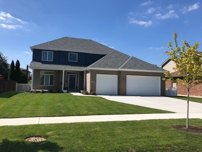 Lemont Single Family Home For Sale: 1280 Monmouth Drive