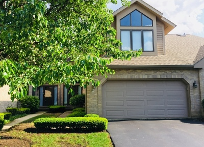 Palos Heights, Palos Hills Condo/Townhouse For Sale: 19 Lake Katherine Way #19