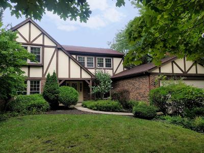 Mount Prospect Single Family Home For Sale: 740 West Whitegate Court