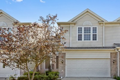 Streamwood Condo/Townhouse For Sale: 1537 Yellowstone Drive