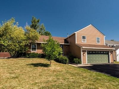 Warrenville Single Family Home For Sale: 29w650 Ridge Drive