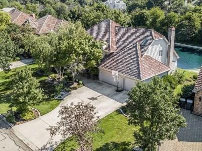 Naperville Single Family Home For Sale: 2438 Rivermist Court