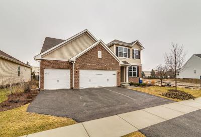 South Elgin Single Family Home For Sale: 716 Heartland Lane
