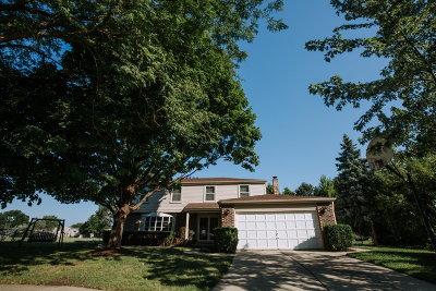 Libertyville Single Family Home For Sale: 1138 Weeping Willow Lane