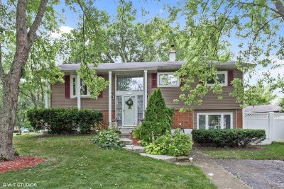 Lombard Single Family Home For Sale: 21w261 Drury Lane