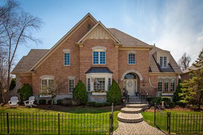 Elmhurst Single Family Home For Sale: 240 East May Street