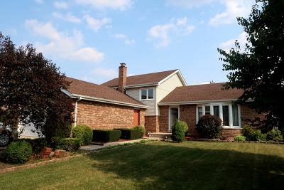 Orland Park Single Family Home For Sale: 9221 Wheeler Drive