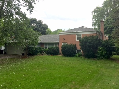 Lake Zurich Single Family Home For Sale: 336 North Prairie Lane