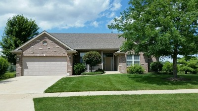 Rockford Single Family Home For Sale: 8440 Blue River Road