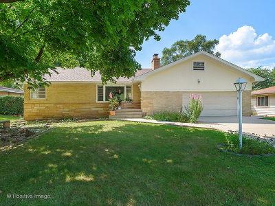Roselle Single Family Home For Sale: 410 Glendale Road