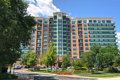 Woodridge Condo/Townhouse For Sale: 6420 Double Eagle Drive #410