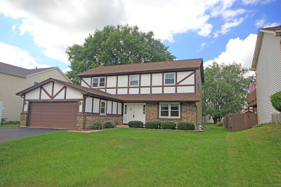 Carol Stream Single Family Home For Sale: 1285 Big Horn Trail