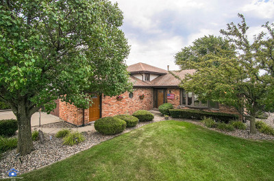 Orland Park Single Family Home For Sale: 11611 Pineview Drive