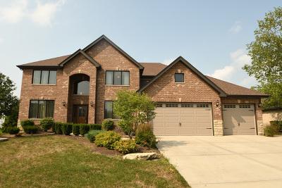 Orland Park Single Family Home For Sale: 11046 Garrett Drive