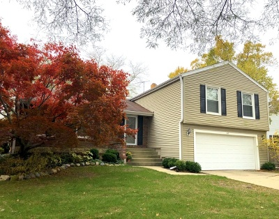Buffalo Grove Single Family Home For Sale: 1145 Knollwood Drive