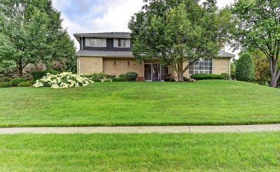 Roselle Single Family Home For Sale: 370 East Foster Avenue