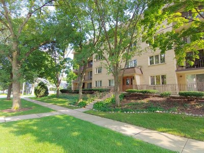 Arlington Heights Condo/Townhouse For Sale: 225 East Wing Street #401