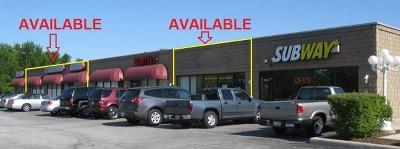 Crete, Monee Commercial For Sale: 1016 East Steger Road