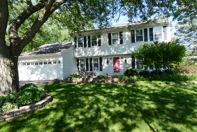 St. Charles Single Family Home For Sale: 1442 7th Court