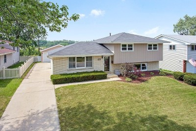 Orland Park Single Family Home For Sale: 15202 Hilltop Drive